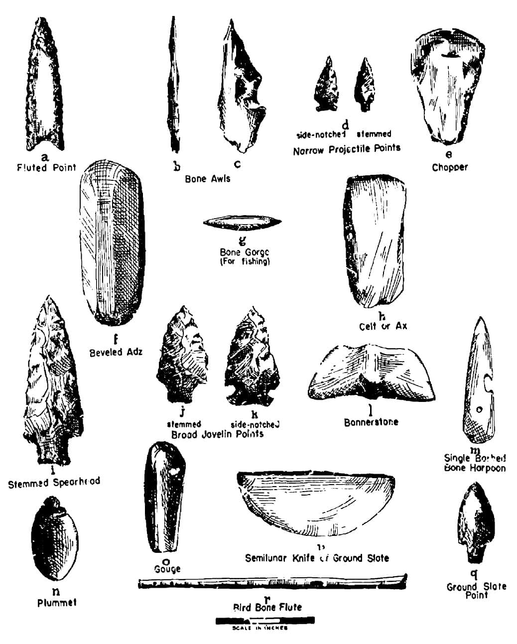 paleo-and-archaic-artifacts-from-william-ritchie-ny-state-educational Archaic Period (3,500 - 1,300 B.C.) Jeremy Dennis On This Site