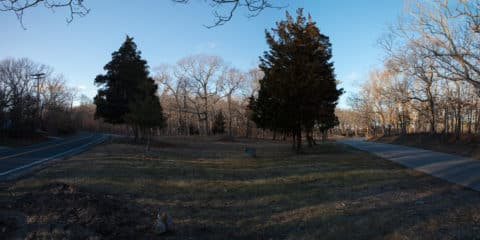 Molly's Hill