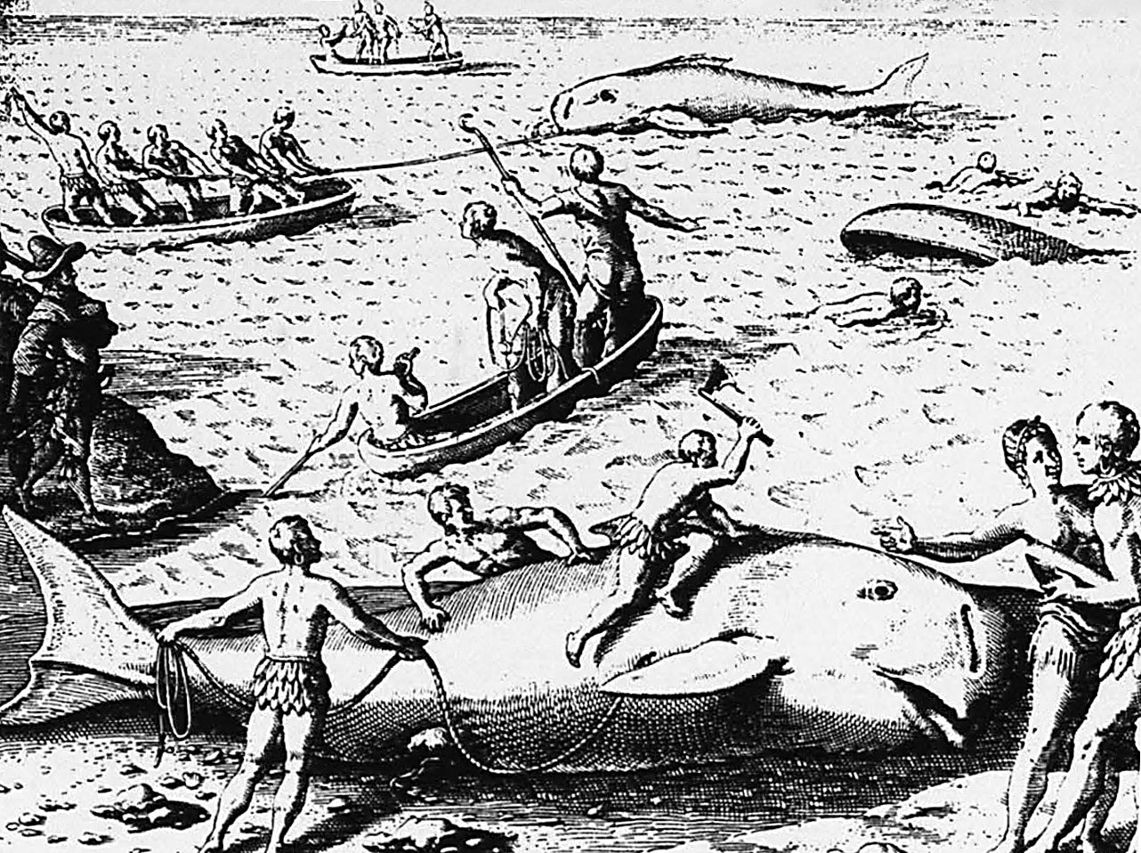 Theodore-Debry-woodcut-c.1598-Contact-Period-Atlatic-Coast-from-Gaynell-Stone-1991-map Whaling Jeremy Dennis On This Site