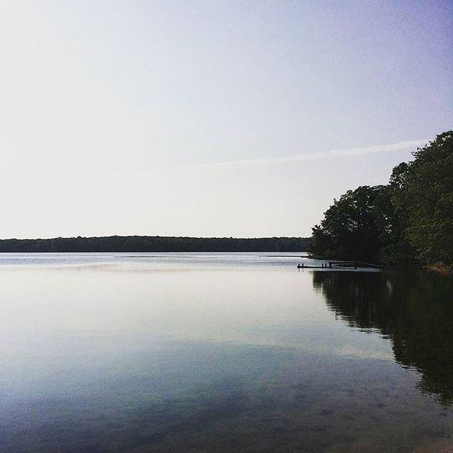 Fresh water Ashumet Pond